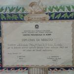 Diploma di merito attività svolta nel campo dei sussidi audiovisivi anno scolastico 1965-66